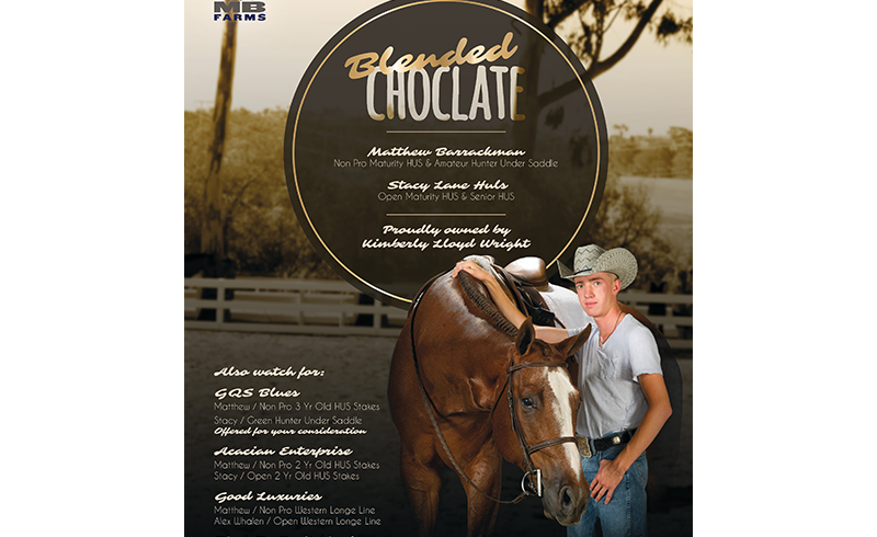 blended choclate